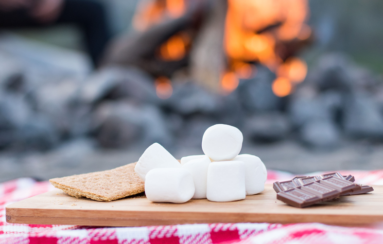 image of marshmallow, chocolate and biscuit